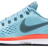 Conocela Nike Air Pegasus 34